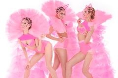 Show dancers in pink dresses Stock Image