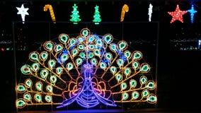 Show för julljus Arkivfoto