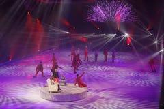 Show - Feiertag auf Eis Stockbilder