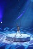 Show - ferie på is Fotografering för Bildbyråer