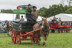 Show horse and cart Royalty Free Stock Images