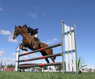 Show Jumper. A horse clearing a jump at the Horse of the Year 2007 competition in Hastings, New Zealand Stock Photos