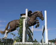 Show Jumper royalty free stock photography