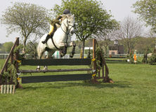 Show jumper. Horse and rider during show jumping competition stock photo