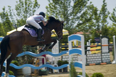 Show Jumper. A show jumper at a contest Stock Photography