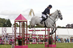 Show jumper Royalty Free Stock Image