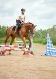 Show jumping. Royalty Free Stock Photography