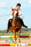 Show jumping. The girl skips on a horse Stock Image