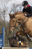 Show-jumping Stock Images