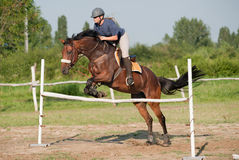 Show jumping Stock Images