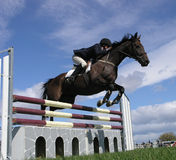 Show Jumping. A horse clearing a jump. Taken at the Horse of the Year 2007 in Hastings, New Zealand Royalty Free Stock Photography