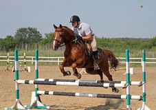 Show jumping Royalty Free Stock Photography