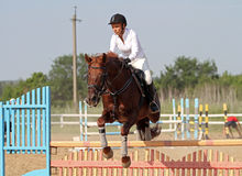 Show jumping Stock Photos