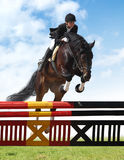 Show jumping. Woman and horse Royalty Free Stock Photos