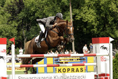 Show-jumping, photo stock