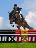 Show jumping. Woman and horse Stock Images