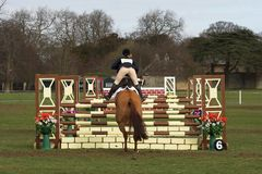 Show Jumping. Show jumper and three hurdles Stock Images