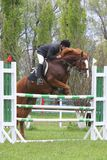 Show jumping. Rider on a horse jumping over obstacle royalty free stock photography