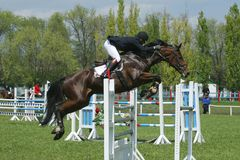 Show jumping. Rider on a horse jumping over obstacle Royalty Free Stock Images