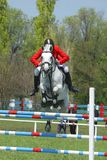 Show jumping. Rider on a horse jumping over obstacle stock photography
