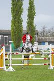 Show jumping. Rider on a horse jumping Stock Photos