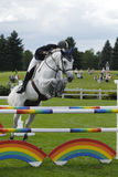 Show jumping competition Royalty Free Stock Photo