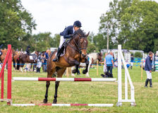 Horse Show Jumping at the Hanbury Countryside Show, England. A beautiful horse ridden by a lady jumping over one of the obstacles during an equestrian event at Stock Photography