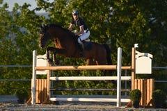 Show jumping Stock Photos