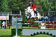 Show jumping horse Royalty Free Stock Image