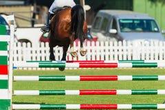Show Jumping Horse Closeup Rear Photo. Show Jumping horse unidentified rider closeup jumping gate poles rear action photo royalty free stock photos