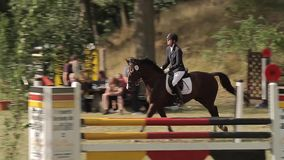 Show jumping with horses stock video footage