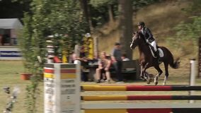 Show jumping with horses Royalty Free Stock Photos