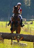 Show Jumping. Open Day Trails, Horse in mid Jump Stock Image