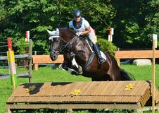 Show Jumping. Open Day Trails, Rider looking for the next jump Royalty Free Stock Image