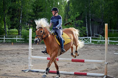 Show jumping Royalty Free Stock Image