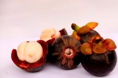 Show-Königin Oberteil der Mangostanfrucht trägt offene köstlich Früchte stockfotos