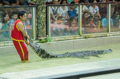 The show with the man and crocodile show for people and travelle Royalty Free Stock Images
