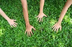 Show me your hands!. Children's hands stock images