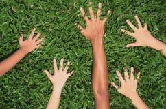 Show me your hands!. Children's hands stock photo