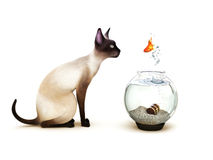 Show no fear. Fish jumping out of a fish bowl in front of a cat. Humor, Part of an animal theme series Royalty Free Stock Image