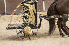 Show, Roman chariot in a fight of gladiators, bloody circus Royalty Free Stock Photography