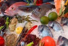 Show-venster van vissen stock foto's