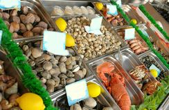 Show-window of seafood Royalty Free Stock Photos