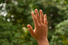 ้show  your hand Royalty Free Stock Images
