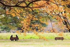 Showa Memorial Park Stock Image