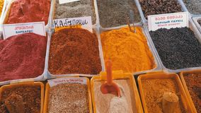 Showcase with Colorful Oriental spices and condiments on the Street market. Batumi, Georgia. Cilantro, hot peppers, sweet peppers, saffron, turmeric, oregano stock video