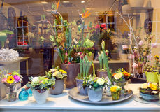 Showcase floral shop. Stock Photo