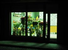Showcase of a flower shop at night Stock Images