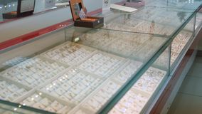 Showcase of a jewelry store. Silver and gold items with precious stones, necklaces on mannequins and various ornaments. Showcase of a jewelry store. General stock video
