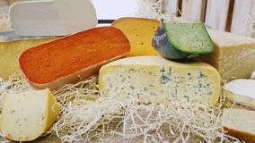 Showcase with many types of cheese.  stock video footage